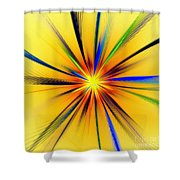 Sun Behind The Palm Leaves Shower Curtain