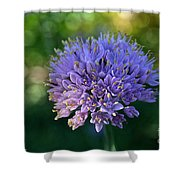Sun Kissed Morning Shower Curtain