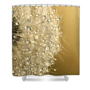 Sun Sparkled Dandy Shower Curtain