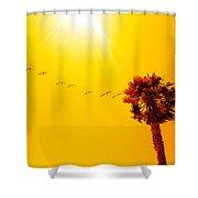 Sunbound Shower Curtain