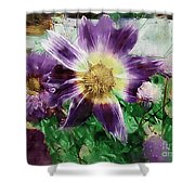 Sunburst In Lavender Shower Curtain