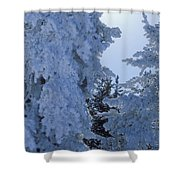 Sunburst In Yellowstone Shower Curtain