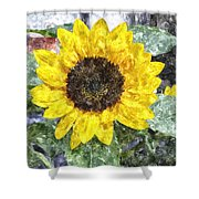 Sunflower 4 Sf4wc Shower Curtain