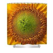 Sunflower Fantasy Shower Curtain