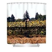 Sunflower Farm Scene Shower Curtain