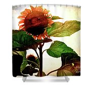 The Business Of Bees Shower Curtain