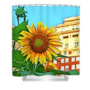 Sunflower In The City Shower Curtain