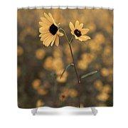 Sunflower In The Wild Shower Curtain