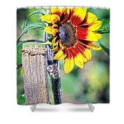 Sunflower On A Stick Shower Curtain