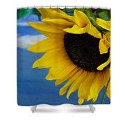 Sunflower One Shower Curtain
