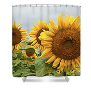 Sunflower Season Shower Curtain