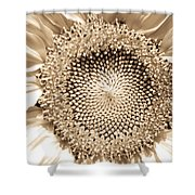 Sunflower Seeds Shower Curtain