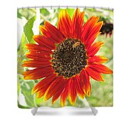 Sunflower With Bee Shower Curtain