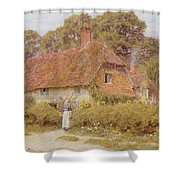 Sunflowers By Helen Allingham Shower Curtain