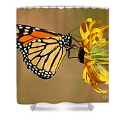 Sunlight Colors Shower Curtain