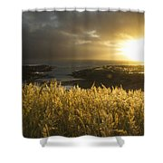 Sunlight Glowing At Sunset And Shower Curtain