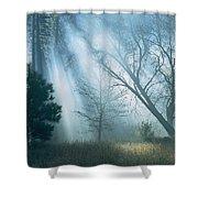 Sunlight Pierces The Morning Mist Shower Curtain