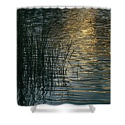 Sunlight Reflects On Rippled Water Shower Curtain