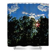 Sunlight Thrugh The Treetops Shower Curtain