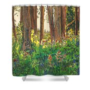 Sunlit Shower Curtain