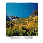 Sunny At The Top Shower Curtain