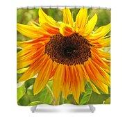 Sunny Bright Sunflower Shower Curtain