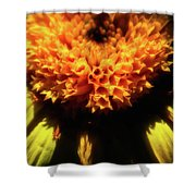 Sunny Flower Shower Curtain