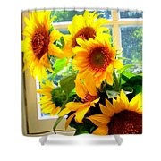Sunny In Md 1 Shower Curtain