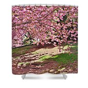 Sunny Patch Under The Cherry Trees Shower Curtain