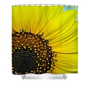 Sunny Summer Sunflower Shower Curtain