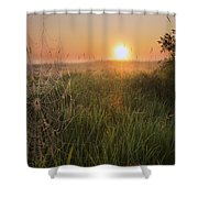 Sunrise On A Dew-covered Cattle Pasture Shower Curtain