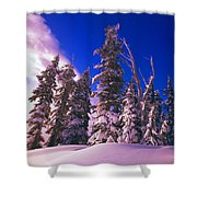 Sunrise Over Snow-covered Pine Trees Shower Curtain