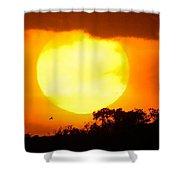 Sunset And Bird Shower Curtain