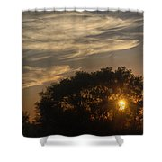 Sunset At The Oasis Shower Curtain