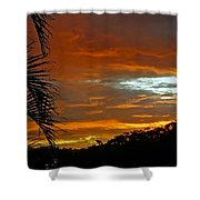 Sunset Behind The Palms Shower Curtain by Kaye Menner