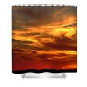 Sunset Bull  Shower Curtain