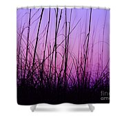 Sunset Grasses Shower Curtain