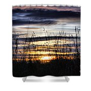 Sunset Grasses Shower Curtain by Sandra Cockayne