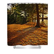 Sunset In Woods At Lake Shore Shower Curtain