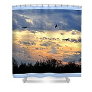 Sunset Of The Hawks Shower Curtain