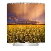 Sunset On A Canola Field Shower Curtain