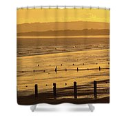 Sunset Over Beach In Winter Youghal Shower Curtain