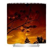 Sunset Over Florida Shower Curtain