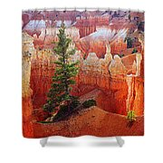 Sunset Point Trees Shower Curtain