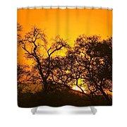 Sunset, Sabi Sand Reserve, Mpumalanga Shower Curtain