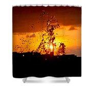Sunset Splash 5 Shower Curtain