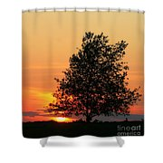 Square Photograph Of A Fiery Orange Sunset And Tree Silhouette Shower Curtain