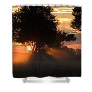 Sunset With Silhouetted Trees Shower Curtain