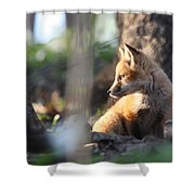 Sunsetting On Youth Shower Curtain
