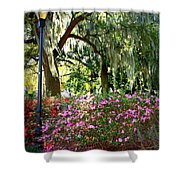 Sunshine Through Savannah Park Trees Shower Curtain